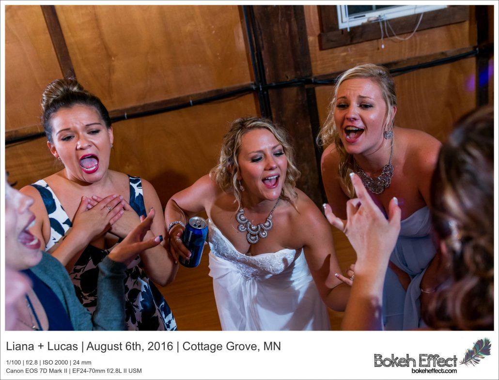 Liana_Lucas_Cottage_Grove_Wedding_Photography_20160806_215843